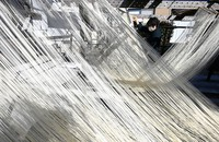 Somen noodles shine under winter sunlight at a traditional factory in the town of Nankan, Kumamoto Prefecture, on Jan. 20, 2021. (Mainichi/Noriko Tokuno)