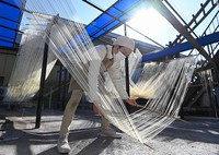 Somen noodles are seen stretched by bamboo sticks under winter sunlight in the town of Nankan, Kumamoto Prefecture, on Jan. 20, 2021. (Mainichi/Noriko Tokuno)
