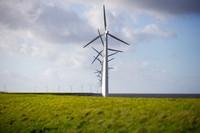 Wind turbines are seen on a dike near Urk, Netherlands, on Jan. 22, 2021. (AP Photo/Peter Dejong)