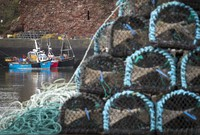 Fishing boats are moored at Dunbar Harbour, East Lothian, near Edinburgh, Scotland, on Jan. 19, 2021. Exports of fresh fish and seafood have been severely disrupted according to fishermen, with new customs checks and paperwork causing severe delays since the UK's Brexit transition period ended. (Jane Barlow/PA via AP)