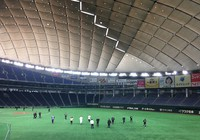 A Yomiuri Giants squad including core and veteran players starts the first day of the team's spring training at Tokyo Dome on Feb. 1, 2021. The team was split up into different groups during the training as a measure to prevent the spread of the coronavirus. (Mainichi/Naoya Tsunoda)