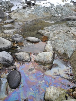 This picture taken at Susobana River in Nagano on Jan. 22, 2021, shows an area near where the oil decomposing bacterial strain was discovered. Due to the natural oil that springs in the area, an oil slick can be seen over the water. (Mainichi/Kenji Noro)