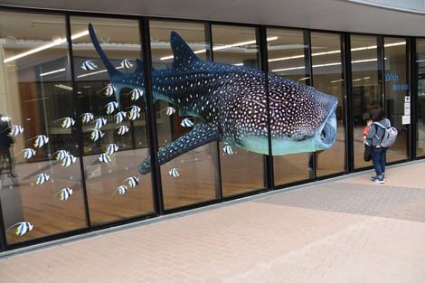 A mother and her child look at a picture of a whale shark on the glass wall of the welfare building at Kisela Kawanishi Plaza, in Kawanishi, Hyogo Prefecture, on Feb. 19, 2021. (Mainichi/Kazuhiro Doi)