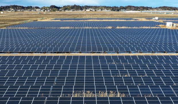 新電力が運営する太陽光発電所=福島県南相馬市で、手塚耕一郎撮影