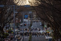 People wearing protective masks to help curb the spread of the coronavirus walk along a pedestrian crossing, on Feb. 28, 2021, in Tokyo. (AP Photo/Kiichiro Sato)