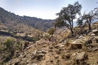 A team from Medecins Sans Frontieres carries medicines on their backs across a hillside in Tsaeda Emba, in the Tigray region of northern Ethiopia on Feb. 12, 2021. (Medecins Sans Frontieres via AP)