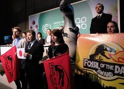 交渉の前進を阻害したとして「特別化石賞」を日本に授与すると発表するNGO=ポーランド・ワルシャワで2013年11月15日午前11時31分、阿部周一撮影