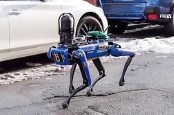 NYPDが導入を検討するロボット警察犬 NYPD提供