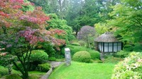 The Japanese garden at Tatton Hall in northern England. (Damian Flanagan)