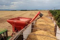 中国に輸出されるブラジル産大豆(サンパウロ)(Bloomberg)
