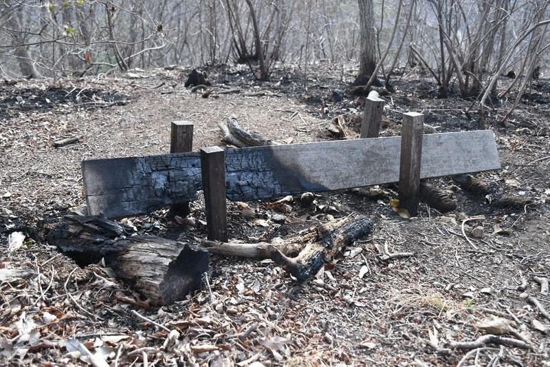 山 栃木 火事 県 【放火】栃木県足利市で山火事が多発 今日現在もまだ燃えている きよし速報
