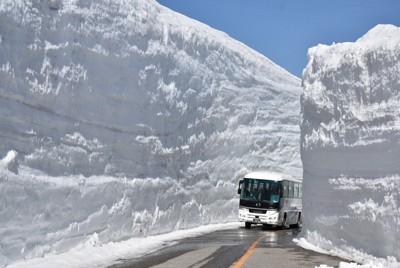 立山黒部アルペンルートが開業した50年前を再現し、1車線分のみが除雪された「雪の大谷」を走るバス=富山県立山町で2021年4月15日午前9時49分、砂押健太撮影