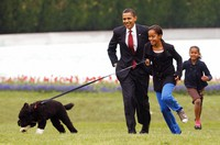 Int his April 14, 2009, file photo Malia Obama runs with Bo, followed by President Barack Obama and Sasha Obama, on the South Lawn of the White House in Washington. (AP Photo/Ron Edmonds, File)