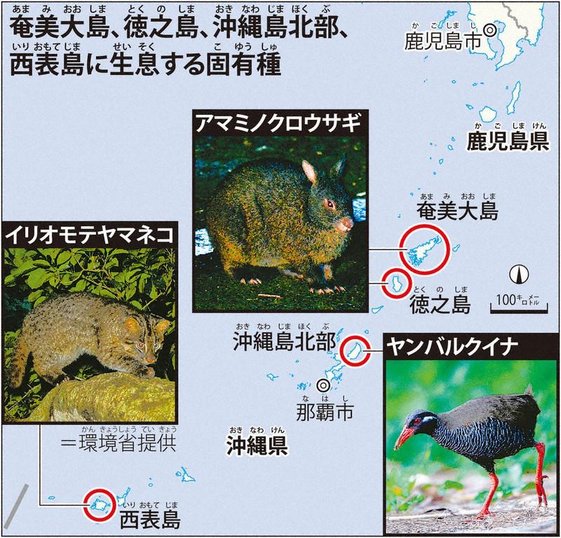 「奄美・沖縄」世界自然遺産登録へ