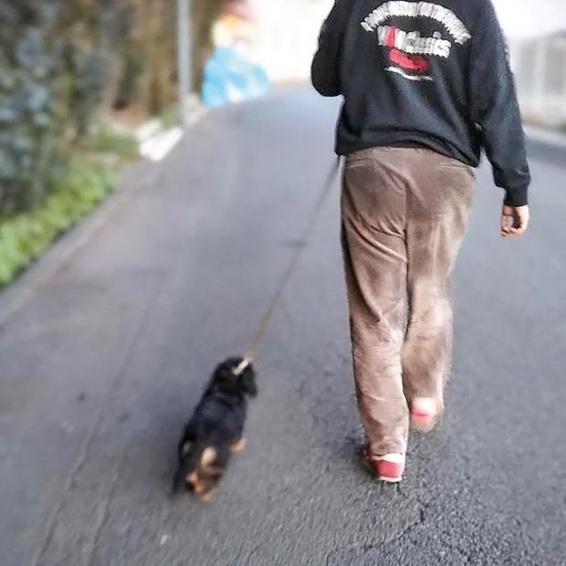 ペットと暮らすことが入居者の心の安定にもつながる アニスピHD提供