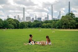 市内の公園では有害な農薬散布が禁止に (Bloomberg)