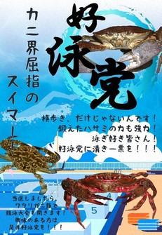 The campaign poster of the Koei Party, consisting of blue crabs and related species. (Image courtesy of the Susami Municipal Aquarium of Crab and Shrimp in Wakayama Prefecture)
