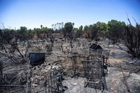 In this July 31, 2019, file photo, burned shopping carts are left behind after a fire in the Sepulveda Basin burned through brush and a homeless encampment in Van Nuys, Calif. (Sarah Reingewirtz/The Orange County Register via AP)