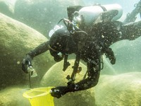 This photo provided by Clean Up The Lake shows a scuba diver beneath the surface of Lake Tahoe, cleaning up trash on May 14, 2021. (Clean Up The Lake via AP)