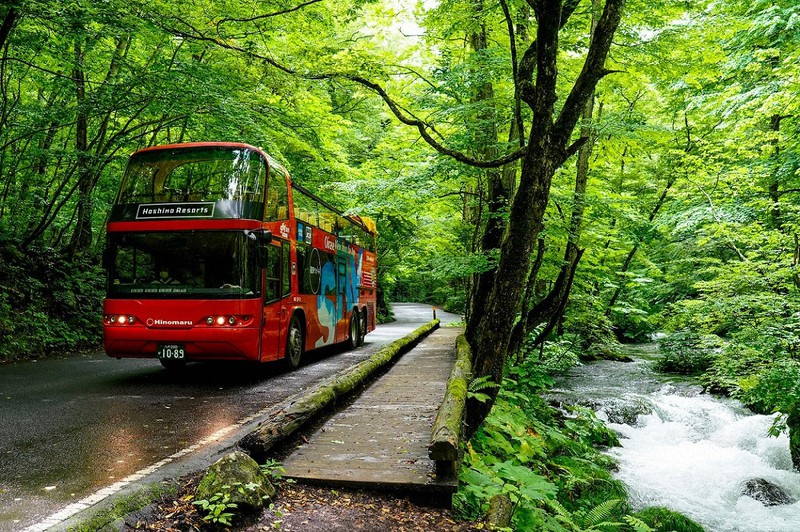 星野リゾートが青森県の奥入瀬渓谷で運行したオープンバス=同社提供