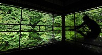 Green maple leaves are reflected on a desk for copying sutras at Rurikoin temple in Kyoto's Sakyo Ward on May 21, 2021. (Mainichi/Kazuki Yamazaki)