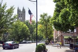 セミの大量発生スポットとして有名なニュージャージー州のプリンストン (Bloomberg)