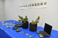 Dried cannabis and other confiscated objects are seen in the Kudan Common Government Office Building No. 3 in Tokyo's Chiyoda Ward, on June 2, 2021. (Mainichi/Nana Hayashida)
