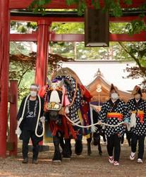 Decorated horses and Noboru Otsubo, left, who raises them, visit the Onikoshi Sozen Shrine in the city of Takizawa, Iwate Prefecture, on June 12, 2021. (Mainichi/Ikuko Ando)