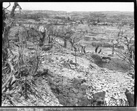The defensive walls behind Shuri Castle moat are reduced to rubble and surrounding trees battered after the castle was taken by the U.S. Fifth Marine Regiment in May 1945. The city of Shuri (present-day Naha) is seen in the background. (Photo courtesy of the Okinawa Prefectural Archives.)