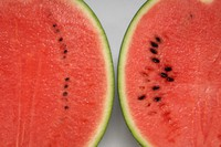 """The cross section of the """"Puchitto"""" watermelon variety with tiny seeds, left, and that of an ordinary variety are seen in this photo provided by Hagihara Farm Co."""