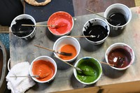 Paint used for the reproduction of