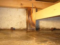 浴室の配水管から少しずつ排水が漏れてい木部が腐っていた