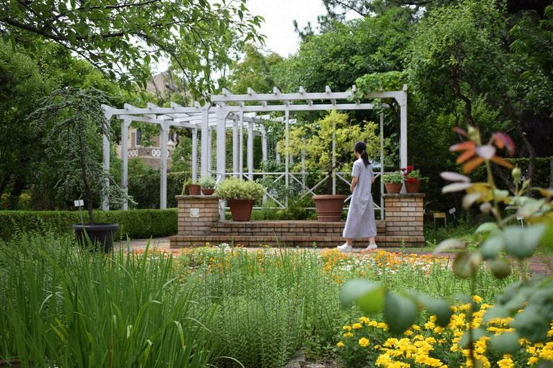 白いパーゴラのある神戸女学院のシェイクスピア・ガーデン=兵庫県西宮市岡田山で、稲田佳代撮影