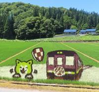 "Rice field art of special train car ""EMI"" and a paper balloon lantern is seen along the Akita Nairiku Line in Senboku, Akita Prefecture, on July 18, 2021. (Mainichi/Akira Kudo)"