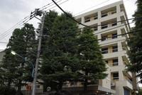 A Tokyo Medical University building is seen in the capital's Shinjuku Ward on July 4, 2018. (Mainichi/Koichiro Tezuka)