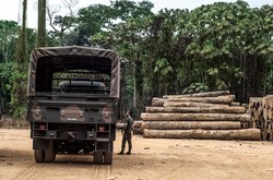 森林破壊が深刻化しているブラジル国内のアマゾン (Bloomberg)