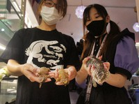 Employees of reptile maid cafe Hachu Melt hold two armadillo girdled lizards, left, and a shingleback lizard, which were safely returned to the cafe in Fukuoka's Chuo Ward, in this photo taken on Sept. 20, 2021. (Mainichi/Masashi Yomogida)