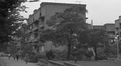 1962年の同潤会青山アパート。2003年に取り壊され、跡地は表参道ヒルズとなった 池田信さん撮影