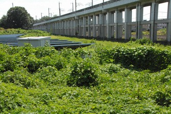 6 - Envelhecimento das usinas de energia solar no Japão; negócios de gestão em expansão