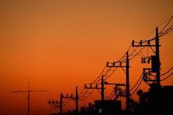 送電線とオレンジ日の入り=東京都世田谷区で2020年11月5日、武市公孝撮影