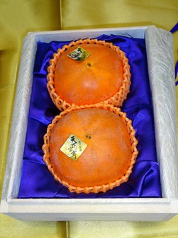 Two persimmons of the highest Tenkabito grade that fetched 860,000 yen (about $7,500)  at auction are seen in this photo provided by the Gifu Prefectural Government.