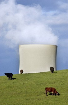 Cattle graze in front of the cooling towers of the Yallourn North power plant in Western Gippsland, Victoria, Australia, on Oct. 10, 2002. (Julian Smith/AAP Image via AP)